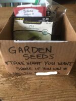 Little Library/ Seed Swap